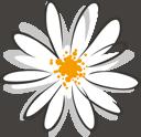 Blume von unserem Logo